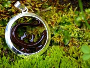Médaille Salamandre Petite