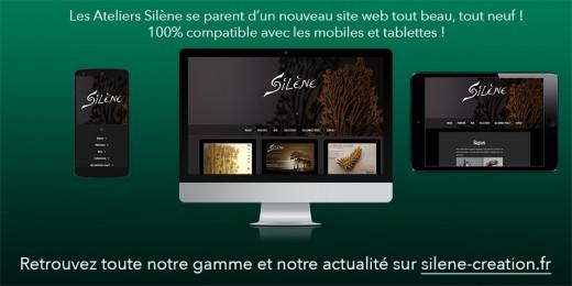 Newsletter n°28 spéciale site web