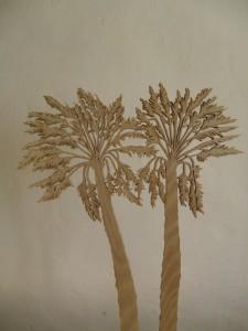 2 Palmiers