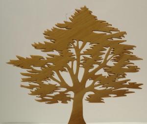 L'Arbre AIGÜ en Buis 12cm x 12 cm 40€