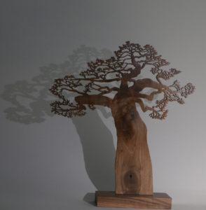 Petit Baobab